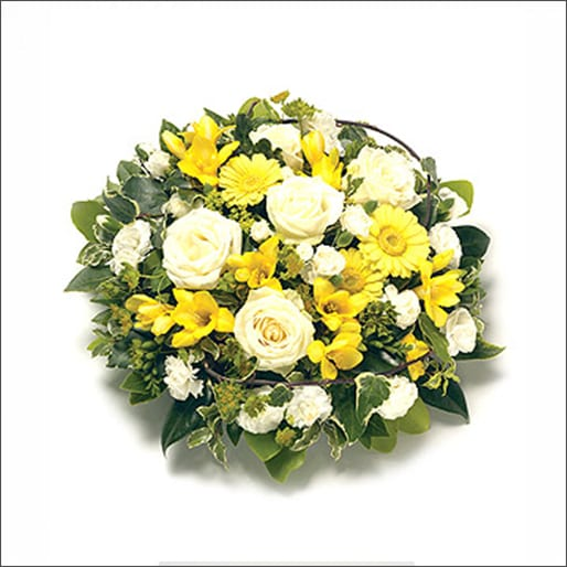 Modern Yellow Posy